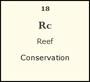 Reef Conservation